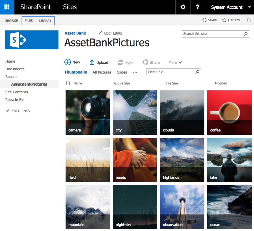 Sharepoint-Digital-Asset-Management-integration-with-Asset-Bank