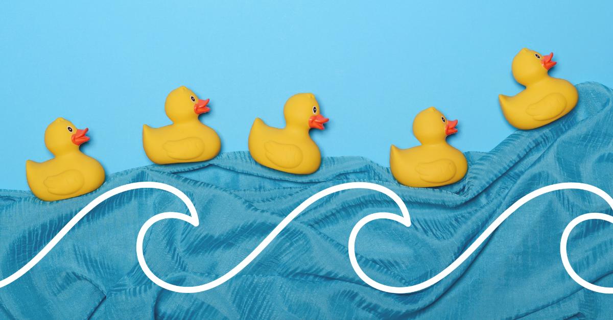 rubber ducks on blanket wave