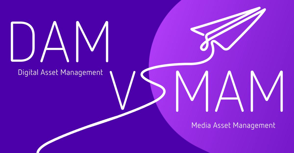 DAM vs MAM graphic