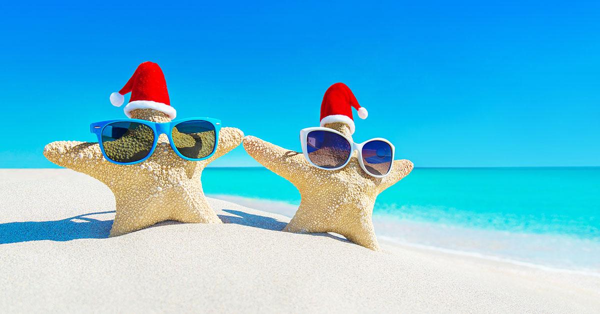 festive-starfish-1200x627